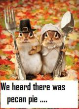 We heard there was pecan pie….