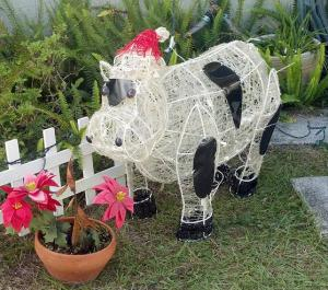 xmas cow in the day