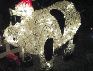 xmas cow at night
