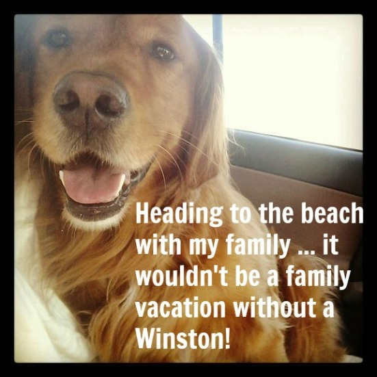 winston family vacation