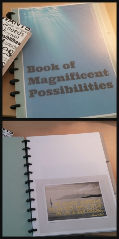 Book of Magnificent Possibilities