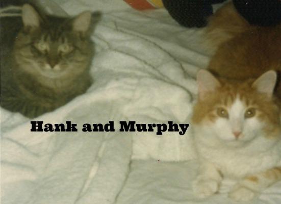 hank and murphy