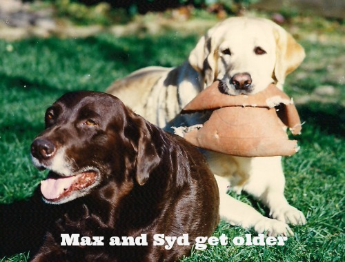 max and syd get older