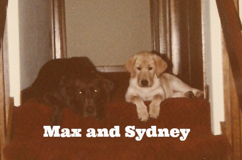 max and sydney