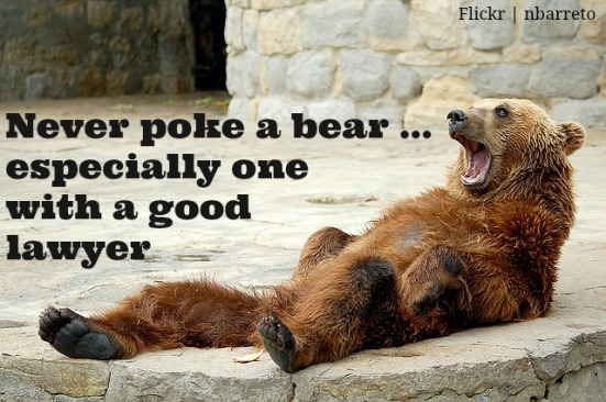 never poke a bear